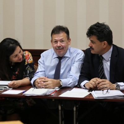 Cornelia Moise, Stefan Ioan, Ionel Pirpiliu